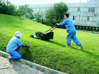 园林绿化养护工
