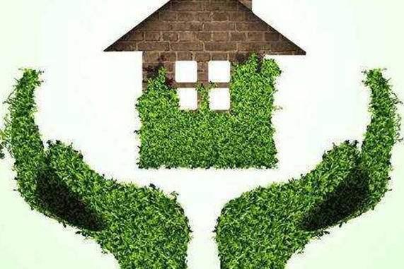 成都植物租赁公司认为室内摆放盆栽植物的时候