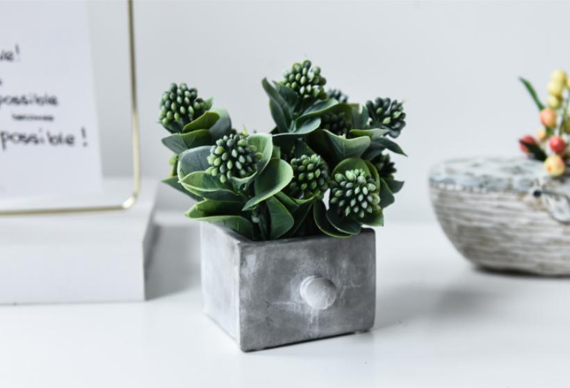 植物租赁公司日常工作中租赁的绿色植物不仅能